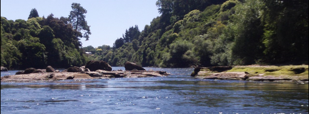 photo of the rock garden on the Waikato river taken during a Camjet Ecological tour in New Zealand.